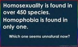 homo 450 species