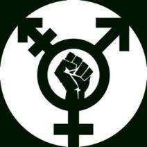 trans power symbol