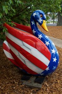 Patriotic swan loves America but is no longer so sure about her fellow Americans.